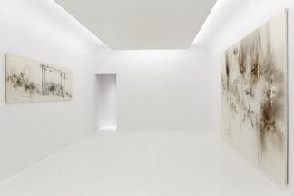 Cai Guo-Qiang, installation view