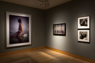 I'm Not the Only One, installation view