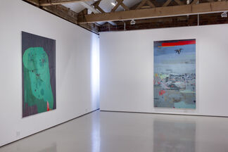 Clive van den Berg: Land Throws Up A Ghost, installation view
