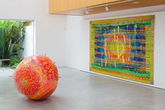 Delson Uchoa, installation view