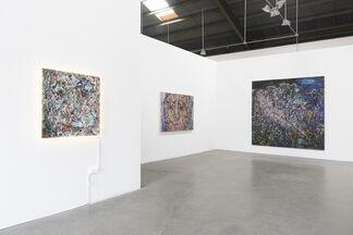 """Vanessa Prager - """"Ultraviolet"""", installation view"""
