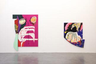 Nicolas Roggy, installation view