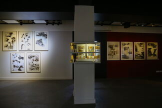 Heartbeat of the Void - Devraj Dakoji's lithographs, drawings and watercolours, installation view