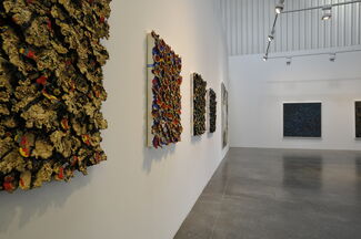 Nabil Nahas - Palms and Stars, installation view