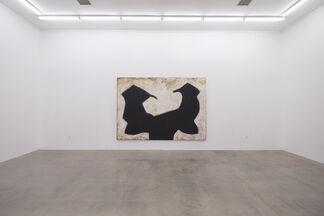 Chuck Webster: Bulldog Skin, installation view
