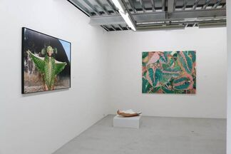 Light in July, installation view