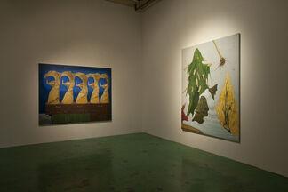 Jumbo Suzuki: Scenery of Love, installation view