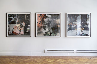 Talking to Ants, installation view