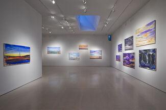 Brendan Cass: Texas, installation view