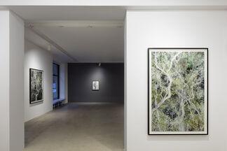 Santeri Tuori: Time Is No Longer Round, installation view