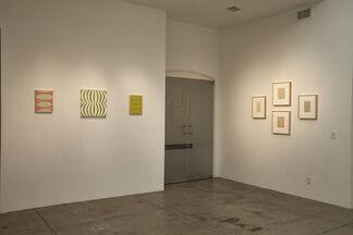 Lynne Woods Turner, installation view