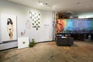 Too Late: The European Can(n)on Is Here, installation view