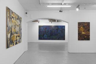 Tom Anholt | True Stories, installation view