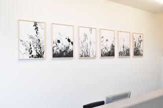 Carlijn Mens | Roadside, installation view