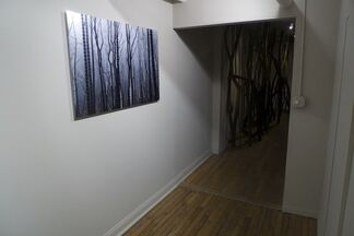 Lisa Stefanelli: Whose These Are, installation view