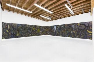 Sandeep Mukherjee 'Mutual Entanglements', installation view