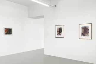 JAN GROOVER, installation view