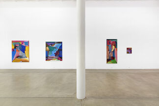 BENJAMIN DITTRICH   Into the Future as an Autopoietic Fruit Fly, installation view