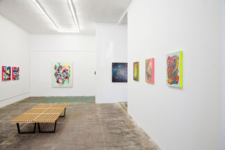 Just The Tip, installation view