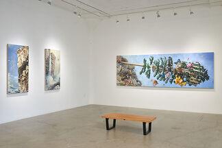 Scott Greene   Deep State, installation view