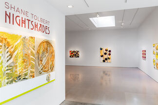 Shane Tolbert: NIGHTSHADES, installation view