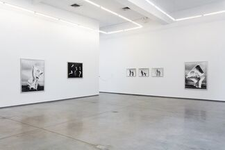 """Carina Brandes - """"Blow Up"""", installation view"""
