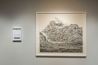 Two Trees and a Mountain ─ Shi Jin-Hua Solo Exhibition, installation view