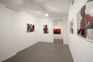 Beasts, installation view