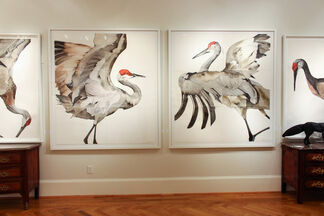 The Choreography of Cranes: A Study of Motion, installation view