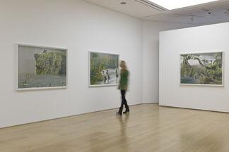 Pamela Golden: Charlie Don't Surf, installation view