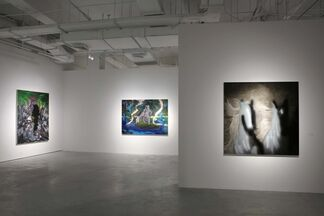 Form Consumption Over Substance Reflection, installation view