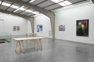 Collector's Room # 16: Landscapes of the Mind, installation view