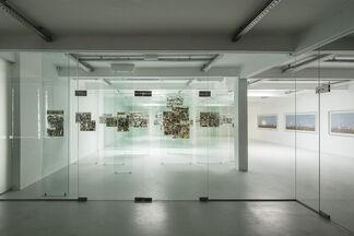 Zhanna Kadyrova - Alterations, installation view