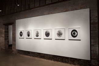 """""""Claw, Shine, Gloam and Vesper"""" new work by Wendy Given, installation view"""