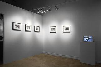 Frida Rediscovered by Leo Matiz, installation view