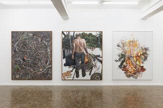Deborah Poynton - The Human Abstract, installation view