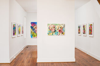 Canopy, installation view