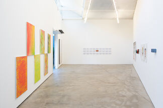 """Dividing Line"", installation view"