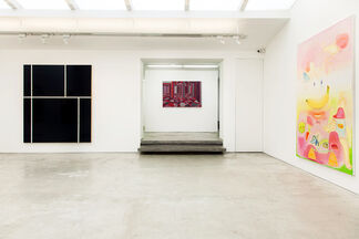 The History of Image, installation view