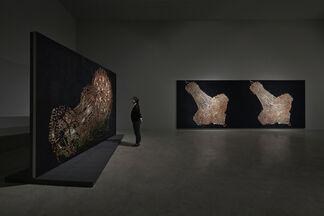 Kyungah Ham: Phantom Footsteps, installation view