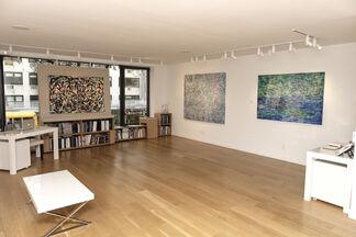 DOUG ARGUE, installation view