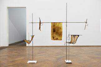Anicka Yi: 7,070,430K of Digital Spit, installation view