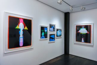 The Arrival, installation view