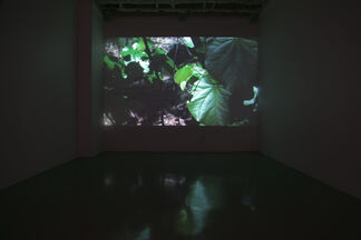 "Rachel Stuckey ""It Takes All Sorts"", installation view"