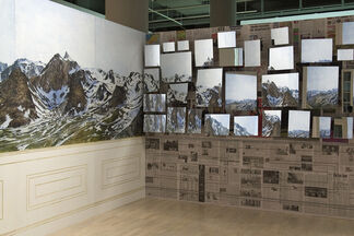 Ellen Harvey: Private Collections, installation view