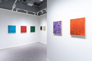 Yoshimi Okuda: Absence, installation view