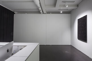 Anna Zaradny | Theurgy Two, installation view