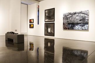 Landscape X 7, installation view