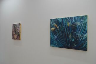 Amanda Besl: I'll Try Not to Breathe, installation view