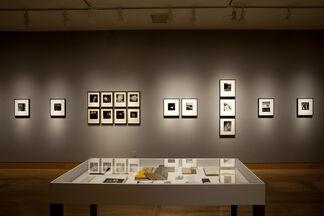 Ralph Eugene Meatyard: American Mystic, installation view